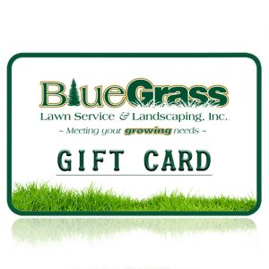 Blue Grass Gift Card | Blue Grass Lawn Serivce
