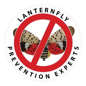 Lanternfly Prevention Experts